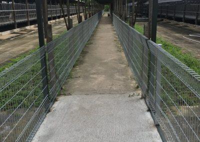 Walkway Fence For Animals