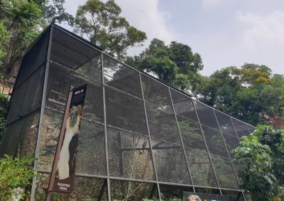Bird Cages Exhibit