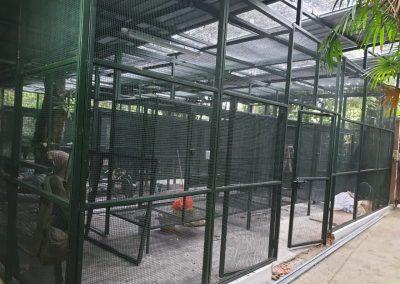 Amphitheatre Cages